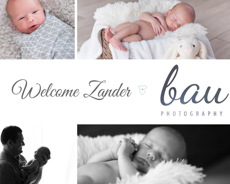Zander New Born